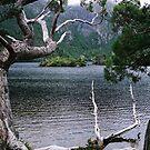 Dove Lake 1 by Chris Cohen