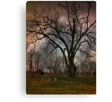 Winter's Last Sigh Canvas Print