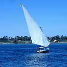 Sailing on the Nile by jeanemm