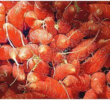 Carrot Art by Mark Ross