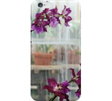 Orchids in the Greenhouse Window iPhone Case/Skin