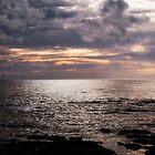 SEA DREAMS by Michael Carter