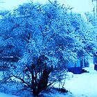 Deep Winter Blue by Be2ru