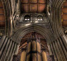 The Organ by Dave Warren