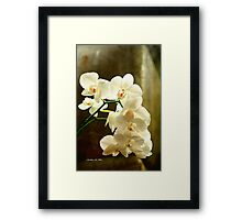 ORCHIDS ON CANVAS Framed Print