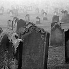 Whitby Grave Stones by Becky Stead