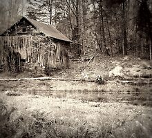 Abandoned Dreams by Kristie King
