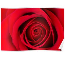 Red Rose II Poster