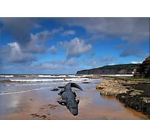 811-Low Tide Gift Photographic Print
