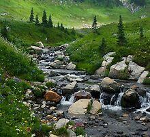 Paradise by skyekathryn