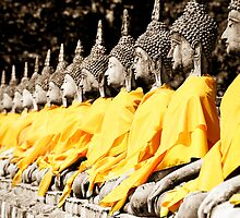 Buddhist Purity by Marnie Hibbert