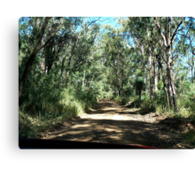 Road up Spicer's Gap Canvas Print