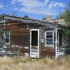 Old Prairie Homestead by Allen Gaydos