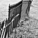 Fenceline by jenfinger77