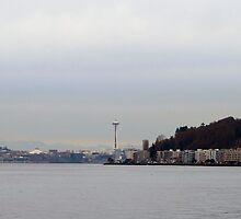 Space Needle from Alki Beach, Seattle by Jymmi Sparkz