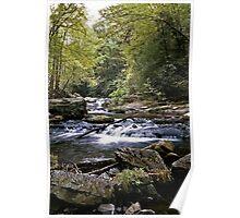 Creekside Serenade Poster