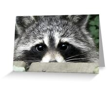 Shyly Hoping Greeting Card