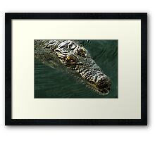African Crocodile Framed Print