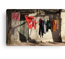 A touch of color... Canvas Print