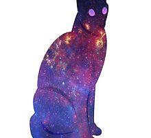 Cat by Nemertines