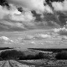 Fulletby Landscape #10 by Dave Pearson