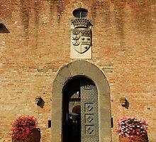 Ingresso del castello by Gino Iori