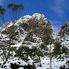 Cradle Mountain  by Bruce Westendorf