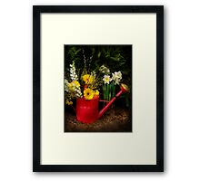 Watering can Framed Print