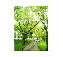 Lush Trees in Central Park NYC Art Print