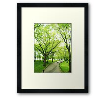 Lush Trees in Central Park NYC Framed Print