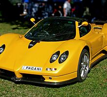 Yellow Zonda by Jason Adams