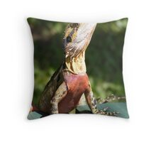 fetch the sunblock Throw Pillow
