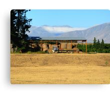 Weathered Truck Canvas Print