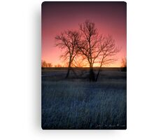 Winters Morning Warmth Canvas Print