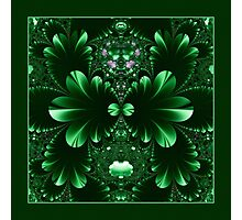 In the Kingdom of the Green - Shawl Photographic Print