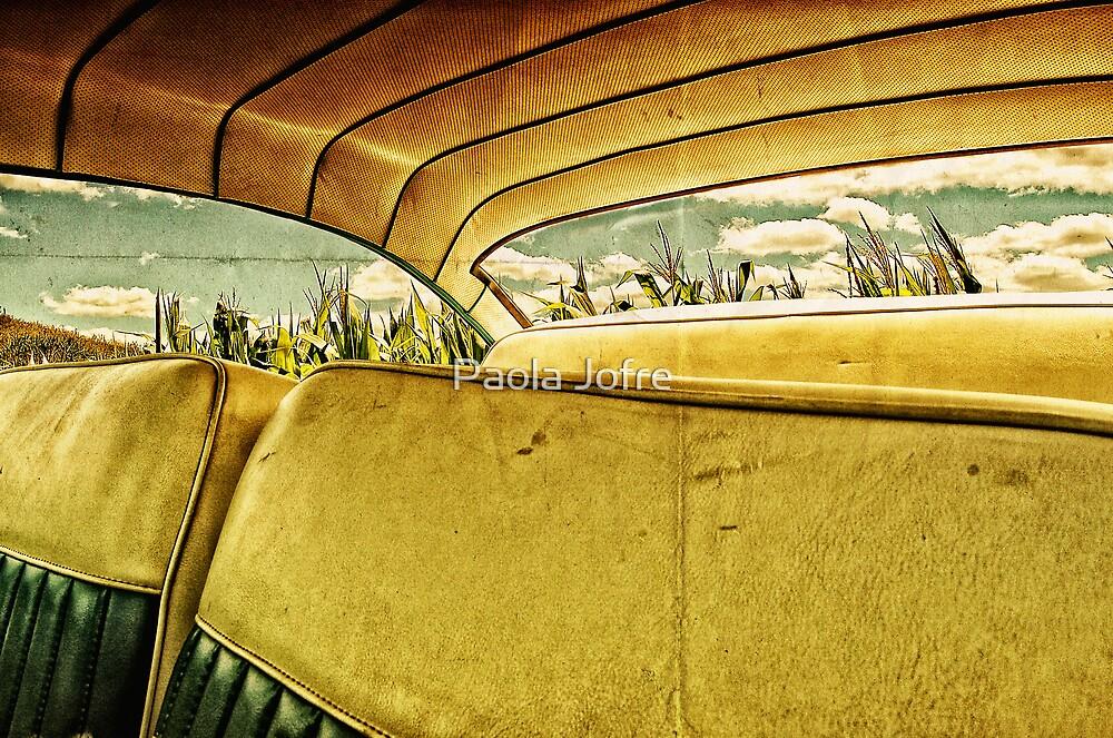 Corn park by Paola Jofre
