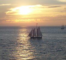 Key West Sunset by Christine Frydenborg Dargon
