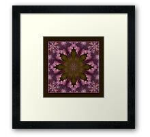 Flower of the Dragonfly Shawl Framed Print