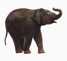 Lucky Baby Elephant tee One Piece - Short Sleeve