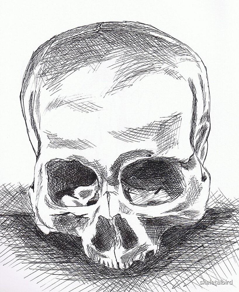 Skull by skeletalbird