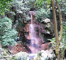 St Lucia Waterfall by Christine Frydenborg Dargon