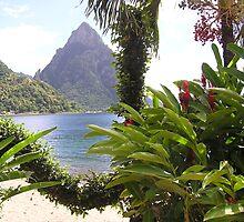 St Lucia by Christine Frydenborg Dargon