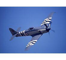 Sea Fury @ Brisbane Airshow, Queensland, Australia 2003 Photographic Print