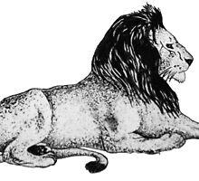Lion Print by Chloé Arzuaga
