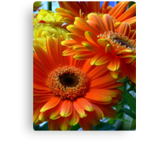 Flowers from my date... Canvas Print