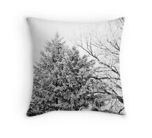 A Touch of Frost pt. 2 Throw Pillow