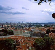 Prague from the Castle 2 by Priscilla Turner