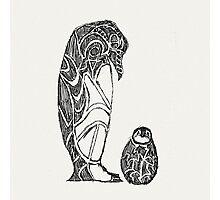 emperor penguin sketch Photographic Print
