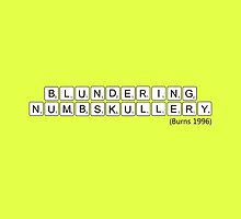BLUNDERING NUMBSKULLERY! by greatbritton99