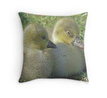 Gosling Siblings Throw Pillow
